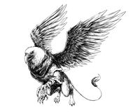 Griffin Drawing. Griff illustration use traditional drawing using digital tecnique, you can also chose png file in high resolution for printing Stock Image