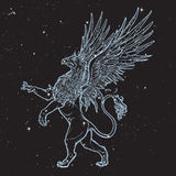 Griffin, griffon, or gryphon on nightsky background. Stock Images
