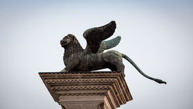 Griffin venice Stock Images