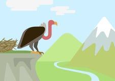 Griffin vulture rock nest flat cartoon vector wild animals birds. Griffin vulture predator on rock nest mountains flat design cartoon vector wild animals birds Royalty Free Illustration