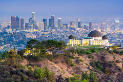 Griffith Park LA Skyline Fotografie Stock