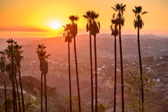 Griffith Park Stock Photos