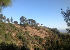 Griffith Park in Los Angeles, USA Stock Photos