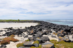 Griffiths Island in Port Fairy, Australia Royalty Free Stock Photo