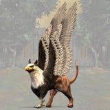 Griffon #01 Photo libre de droits