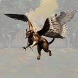 Griffon #03 Image stock