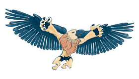 Griffon Stock Photos
