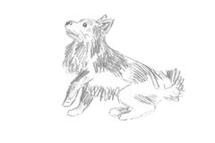 Griffonnage de chien Image stock