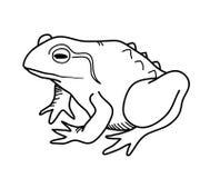 Griffonnage de grenouille Images stock
