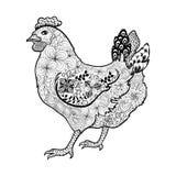 Griffonnage de poulet Images stock