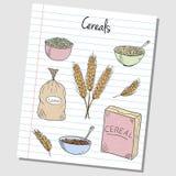 Griffonnages de céréales - papier rayé Photos stock
