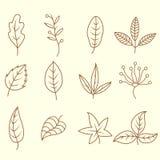 Griffonnages de feuilles d'automne réglés illustration de vecteur