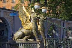 Griffons στο πρωί Ιουνίου γεφυρών τράπεζας Άγιος-Πετρούπολη Στοκ Εικόνες