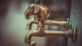 Grifo de agua de cobre amarillo decorativo del elefante foto de archivo libre de regalías