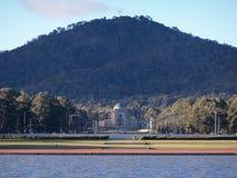 Grifo de Burley do lago, Canberra, Austrália Imagem de Stock