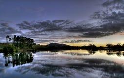 Grifone di Burley del lago Fotografia Stock