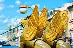 Grifos en el puente del banco, St Petersburg Foto de archivo libre de regalías