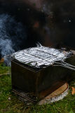 Grigli con il pesce in una stagnola su una griglia Immagine Stock