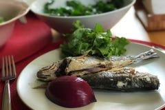 Griglia dei pesci con insalata sana verde Immagini Stock Libere da Diritti