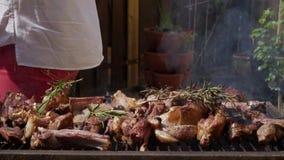 Griglia del ¾ n dell'agnello Ð della carne con i rosmarini, il pepe ed il sale archivi video