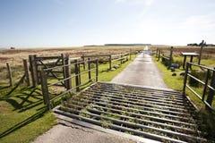 Griglia del bestiame Fotografie Stock