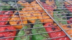 Griglia del pepe Fotografia Stock