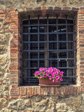 Griglia della finestra sulla facciata rustica con i fiori Immagini Stock Libere da Diritti