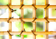 Griglia di bambù Fotografie Stock