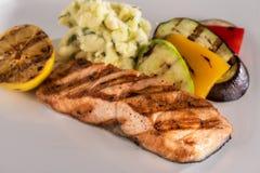 Griglia di color salmone con il contorno sano Fotografie Stock Libere da Diritti