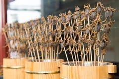 Griglia e scorpioni fritti sul bastone Immagini Stock Libere da Diritti