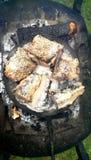 Griglia salata del pesce Immagine Stock