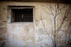 Griglia sulla finestra Fotografie Stock