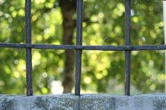 griglie Fotografia Stock