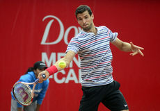 Grigor Dimitrov Stock Photography