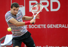 Grigor Dimitrov Stock Photo