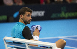 Grigor Dimitrov defeated Monfils in a demonstrative match in Are Stock Photography