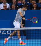 Grigor Dimitrov play on the court Stock Images