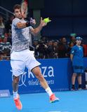 Grigor Dimitrov play on the court Royalty Free Stock Image