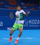 Grigor Dimitrov training on the court Stock Images