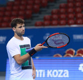 Grigor Dimitrov training on the court Royalty Free Stock Photography
