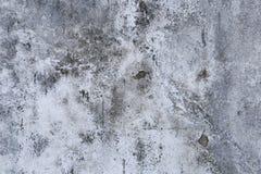 grijs beton Stock Afbeeldingen