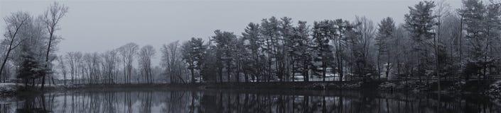 Grijs de winterpanorama van nog vijver en bomen royalty-vrije stock foto
