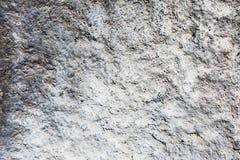 Grijs en wit decoratief pleister Stock Fotografie