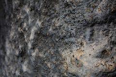 Grijs en zwart decoratief pleister Royalty-vrije Stock Foto