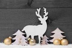 Grijs, Gouden Kerstmisdecoratie, Sneeuw, Boom en Rendier Stock Foto's
