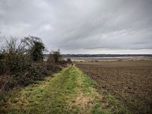 Grijs landschap met modderige famland, Essex, het UK stock afbeelding