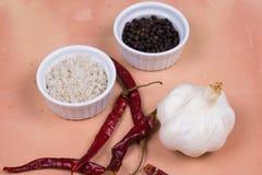 Grijs zout, peperbollen, droog Spaanse pepers en knoflook op Saltillo Royalty-vrije Stock Fotografie