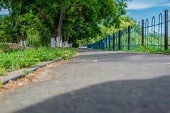 Grijze bedekte weg met een metaalomheining op de rand Anderzijds groene bomen met vergoelijkte boomstammen, in het Park, in de le royalty-vrije stock fotografie