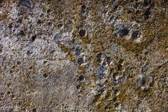 Grijze concrete oppervlakte Stock Fotografie