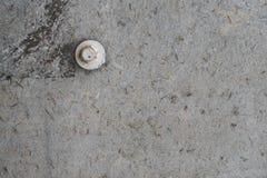 Grijze concrete textuurachtergrond met één witte bout Stock Foto